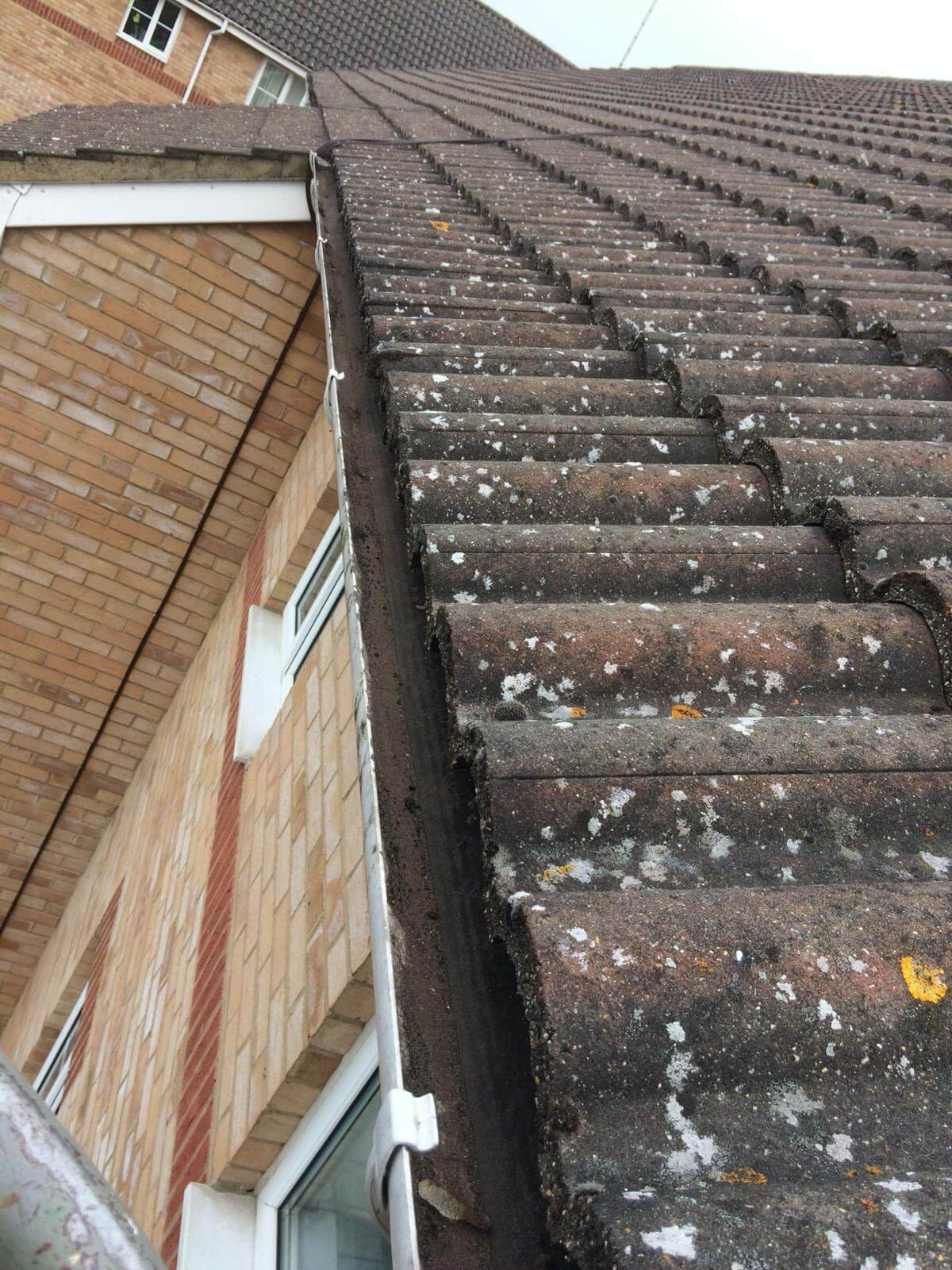national commercial gutter cleaning